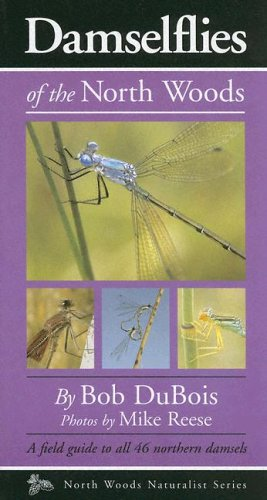 9780967379371: Damselflies of the North Woods (North Woods Naturalist Guides)