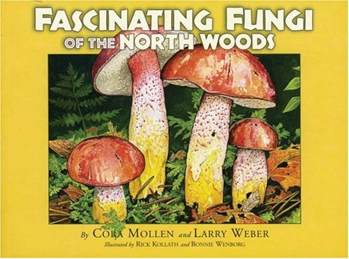 9780967379395: Fascinating Fungi of the North Woods