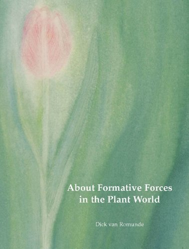 9780967505619: About Formative Forces in the Plant World