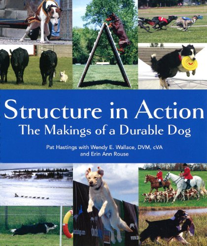 9780967841441: Structure in Action: The Makings of a Durable Dog