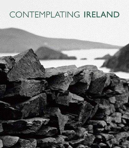 Contemplating Ireland: Deirde Purcell