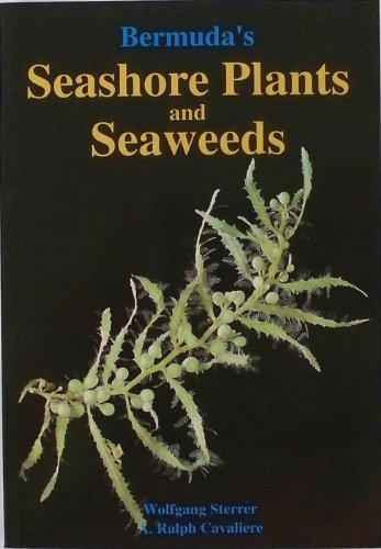 9780968250419: Bermuda's Seashore Plants and Seaweeds