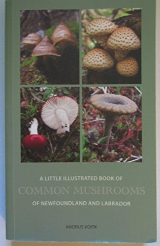 9780969950943: A Little Illustrated Book of Common Mushrooms of Newfoundland and Labrador