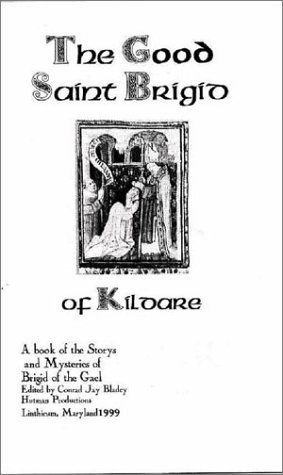 9780970238610: The Good St. Brigid of Kildare: A Guide to the Primary Stories
