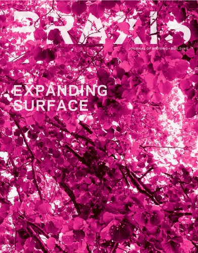 9780970314093: Praxis: Journal of Writing and Building, Issue 9: Expanding Surface