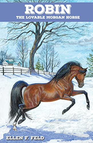 Robin: The Lovable Morgan Horse (Morgan Horse: Ellen F. Feld;