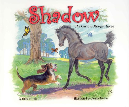 Shadow: The Curious Morgan Horse (Morgan Horse: Ellen F. Feld;