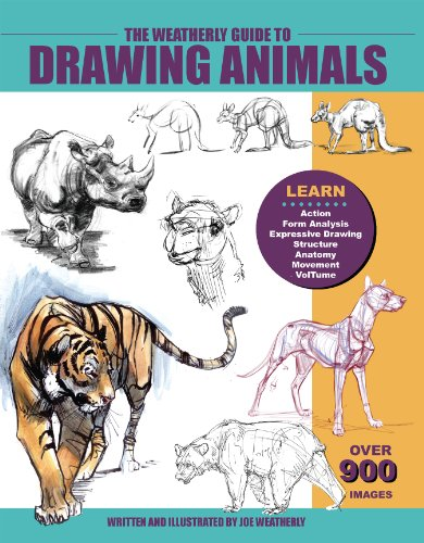 9780971031418: The Weatherly Guide to Drawing Animals