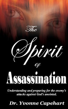 9780971044128: The Spirit of Assassination