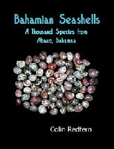 BAHAMIAN SEASHELLS A THOUSAND SPECIES FROM ABACO: Redfern, Colin
