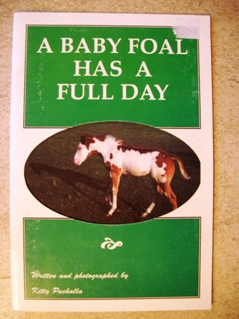 A Baby Foal Has a Full Day: Puchalla, Kitty