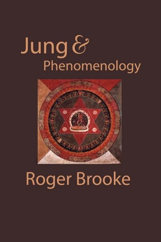 9780971367142: Jung and Phenomenology