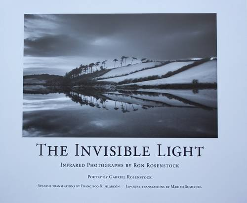 9780971379534: Invisible Light (English, Spanish and Japanese Edition)