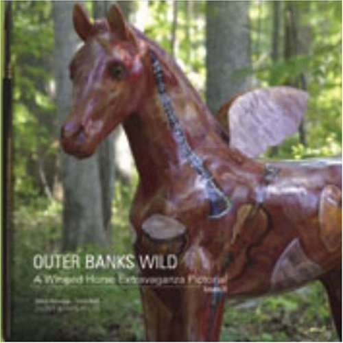 Outer Banks Wild: Volume III: A Winged: Ibelli, Tricia, Alterman,
