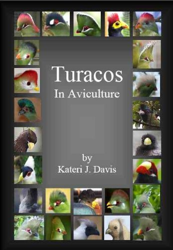 9780971610514: Turacos in Aviculture