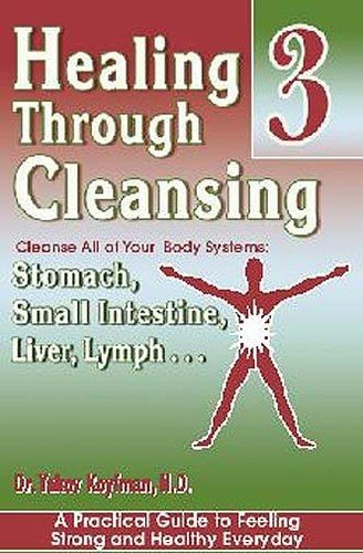 9780971755734: Improve Your Digestion: Stomach, Small Intestine, Liver, Lymph ... (Healing Through Cleansing, 3)
