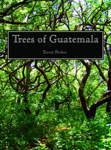 9780971873902: Trees of Guatemala