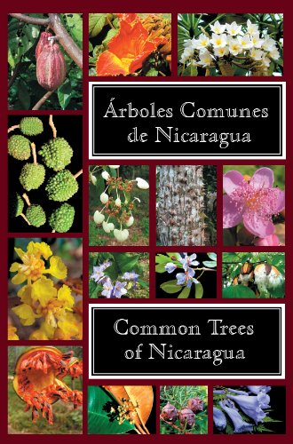 9780971873919: Common Trees of Nicaragua - Árboles Comunes de Nicaragua