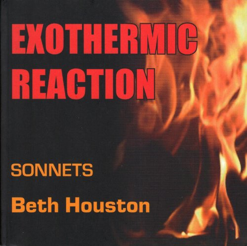9780971919020: Exothermic Reaction