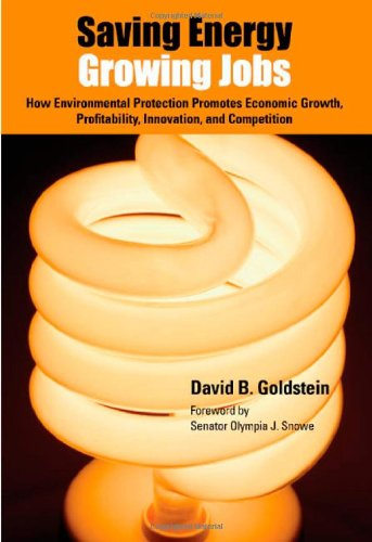 9780972002165: Saving Energy, Growing Jobs: How Environmental Protection Promotes Economic Growth, Profitability, Innovation, and Competition