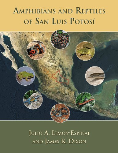 9780972015479: Amphibians and Reptiles of San Luis Potosí