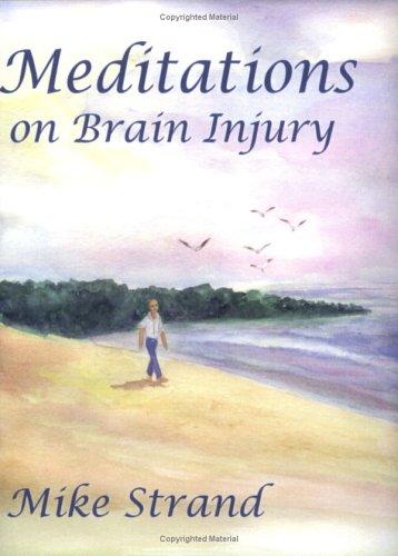 9780972588058: Meditations on Brain Injury