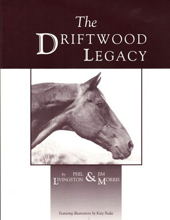 9780972611305: The Driftwood Legacy