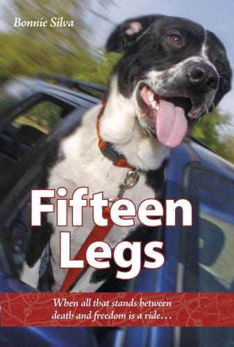 Fifteen Legs: When all that stands between: Bonnie Silva
