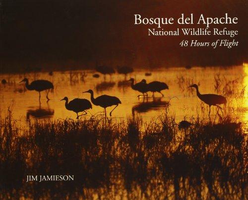 9780972912600: Bosque del Apache National Wildlife Refuge: 48 Hours of Flight