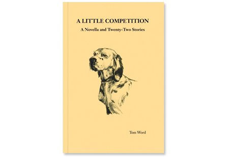 A Little Competition: A Novella and Twenty-Two Stories