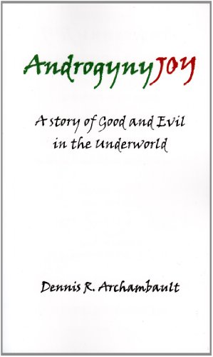 9780972975254: AndrogynJOY: A Story of Good and Evil in the Underworld