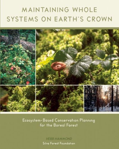 9780973477900: Maintaining Whole Systems on Earth's Crown: Ecosystem-Based Conservation Planning for the Boreal Forest