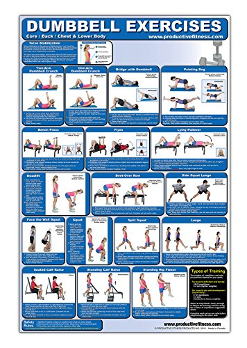 Laminated Dumbbell Exercise Poster/Chart - Lower Body/Core/Chest/Back - Created by Fitness Experts w
