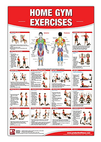 9780973941197: Home Gym Exercises Laminated (Poster)