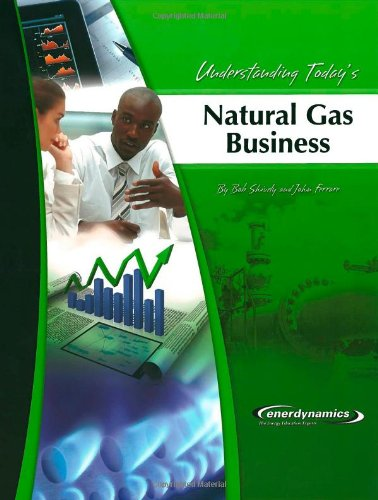 9780974174402: Understanding Today's Natural Gas Business