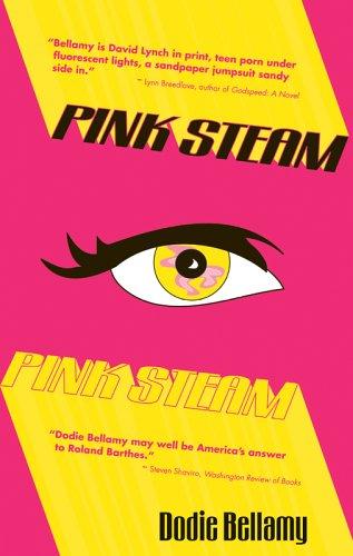 Pink Steam: Dodie Bellamy