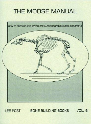 9780974713939: Bone Building Books