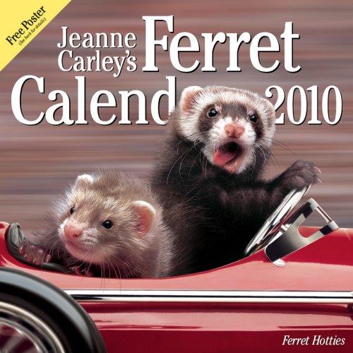 9780974786957: Jeanne Carley's Ferret Hotties 2010 Deluxe Wall Calendar