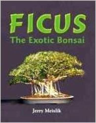 Ficus : The Exotic Bonsai: Meislik, Jerry