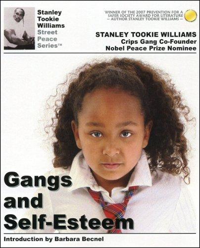 9780975358412: Gangs and Self-Esteem