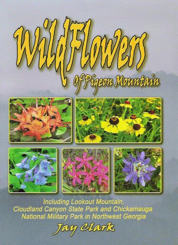 9780976103318: Wildflowers of Pigeon Mountain