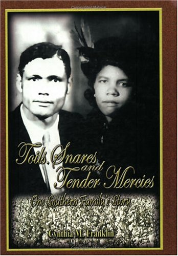 9780976341406: Toils, Snares and Tender Mercies One Southern Family's Story