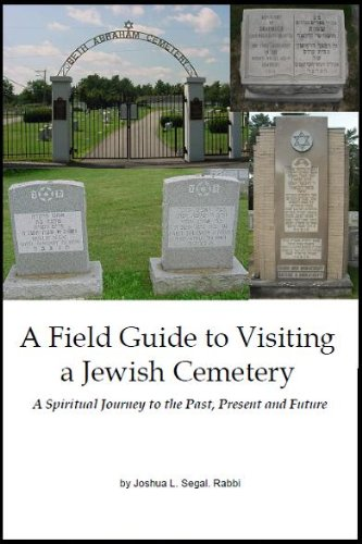 9780976405719: A Field Guide to Visiting a Jewish Cemetery