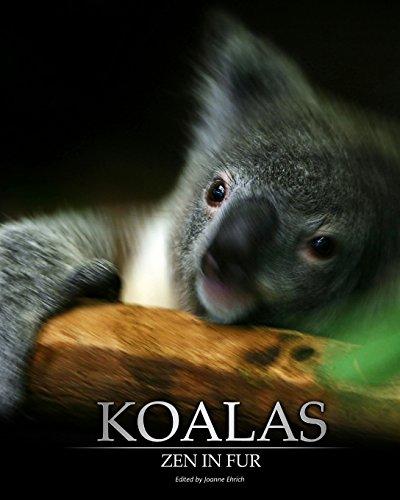 Koalas: Zen In Fur, BW Edition: Ehrich, Joanne