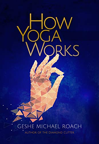 9780976546900: How Yoga Works: Healing Yourself and Others With The Yoga Sutra