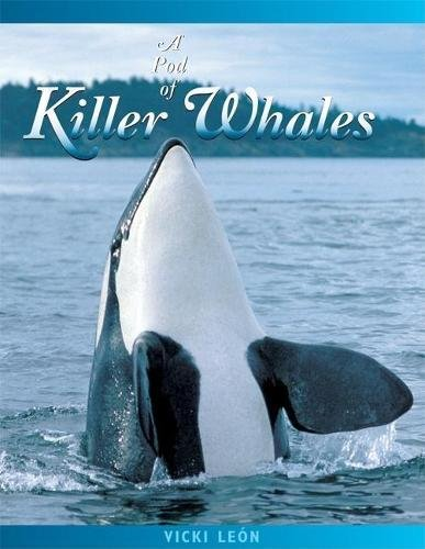 9780976613473: A Pod of Killer Whales: The Mysterious Life of the Intelligent Orca (Jean-Michel Cousteau Presents)