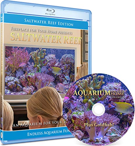 9780976731085: Aquarium for Your Home Blu-ray with Bonus Goldfish and Mountain Stream Editions
