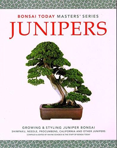 9780976755036: Junipers: Growing & Styling Juniper Bonsai (Bonsai Today Masters Series) by W...