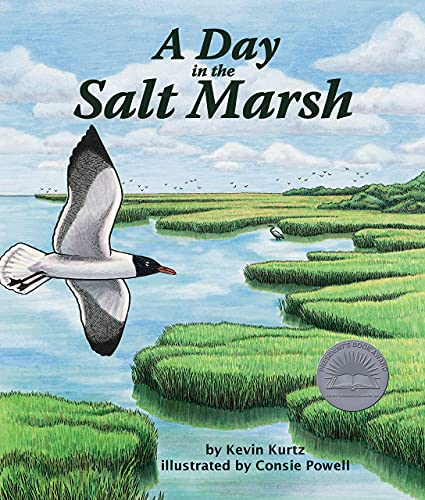 9780976882350: A Day in the Salt Marsh
