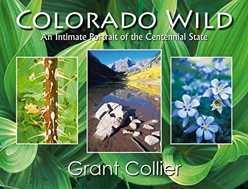 9780976921844: Colorado Wild: An Intimate Portrait of the Centennial State